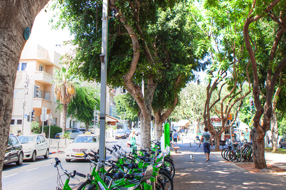 Tel Aviv City Center & Rothschild Blvd.  Photo: Dana Friedlander