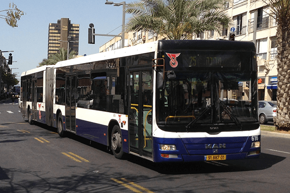Buses in Israel  Potho: Andrew Nash